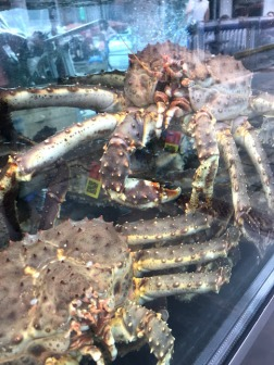 Terrifyingly large crabs
