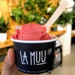 Raspberry prosecco ice cream